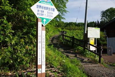 daichimori101_GR015911