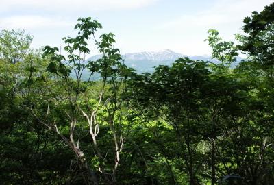 daichimori310_GR015994
