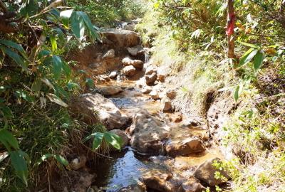 雨水汇集形成河流,需准备防水登山靴和护腿