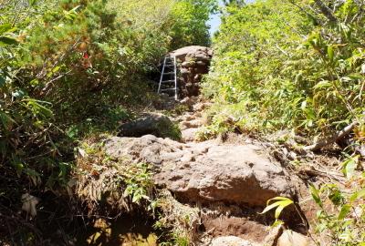还有手脚并用才能攀登的岩石和梯子