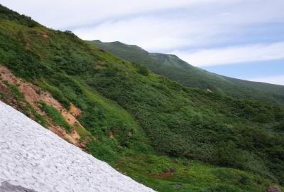 6〜8月頃の御室(山頂方向)