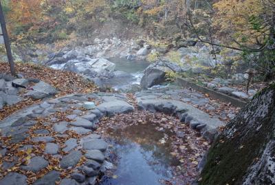 渓流に面した野趣ある湯浜温泉露天風呂。入浴料500円