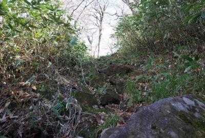 標高1,000m付近で勾配が少し急になり岩場があります
