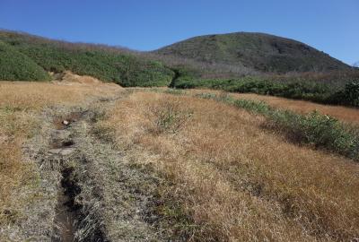 標高1,200mを越えると山毛欅林を抜け、展望が開けます。右は虚空蔵山