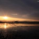 TatsuhikoHirata_IMG_8152