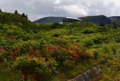 紅葉情報(9月14日)須川高原