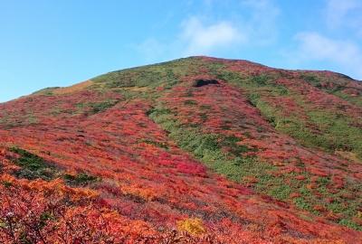 紅葉情報(9月27日)自然観察路