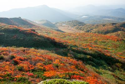 紅葉情報(9月23日)天間尾根登山道(展望岩頭)