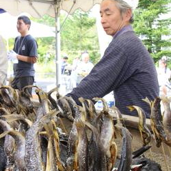2015栗駒耕英岩魚祭