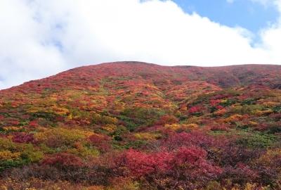 紅葉情報(9月27日)須川登山道