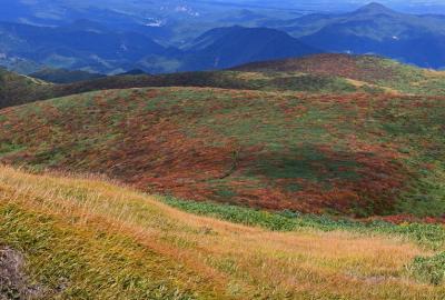 紅葉情報(9月19日)山頂、中央登山道