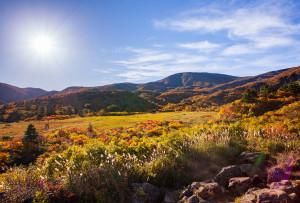 黄葉が見事な名残ヶ原と山頂