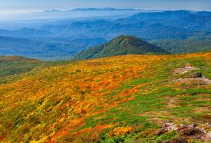 東栗駒山稜線より奥羽山脈南部と蔵王連峰
