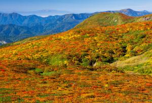 東栗駒山より中央登山道越しの奥羽山脈と月山