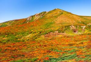 東栗駒山より山頂方向
