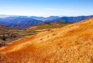 秣岳南斜面、奥羽山脈南部