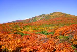 新湯沢と東栗駒山稜の中間点付近から山頂を望む