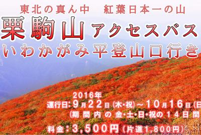 紅葉の栗駒山 登山busの申込みが始まりました!