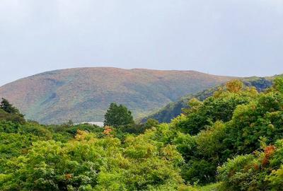 紅葉情報(9月25日)須川高原