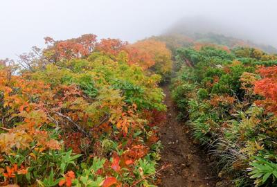 紅葉情報(9月24日)須川登山道
