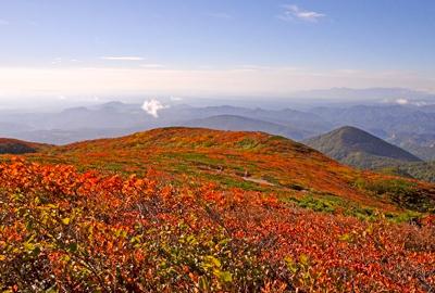 紅葉情報(10月2日)中央登山道