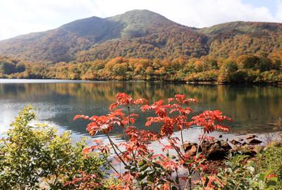 紅葉情報(10月15日)須川湖