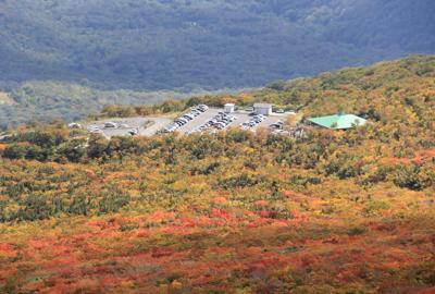 紅葉情報(10月10日)中央登山道