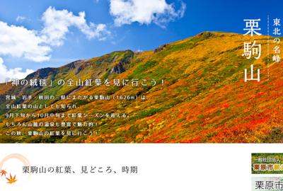 Yamakei Onlineに掲載
