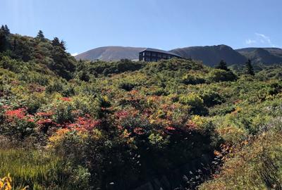 紅葉情報(9月22日)須川高原