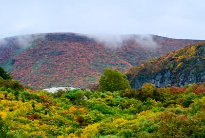 紅葉情報(9月28日)須川登山道