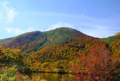 紅葉情報(10月8日)須川湖、天馬尾根(秣岳)登山口