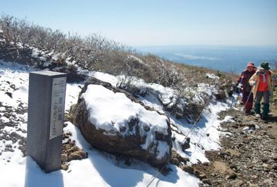 中央登山道の開花と残雪状況
