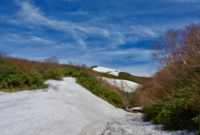 東栗駒登山道の残雪状況