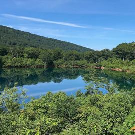 真夏でも涼しい須川高原