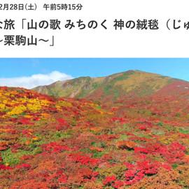 12月28日05時15分 NHK「小さな旅」栗駒山を再放送