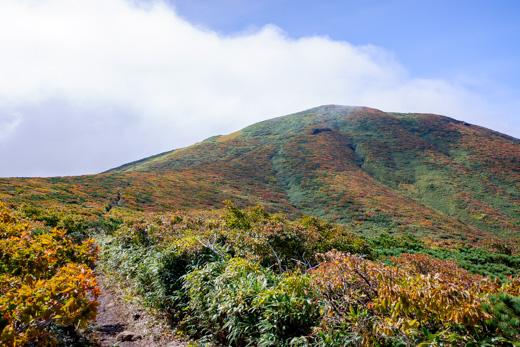 紅葉情報 須川登山道、自然観察路