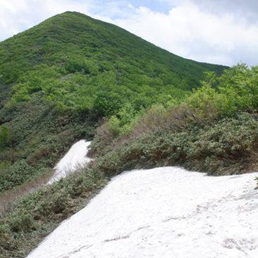 須川・自然観察路、天馬尾根(秣岳)の登山道情報